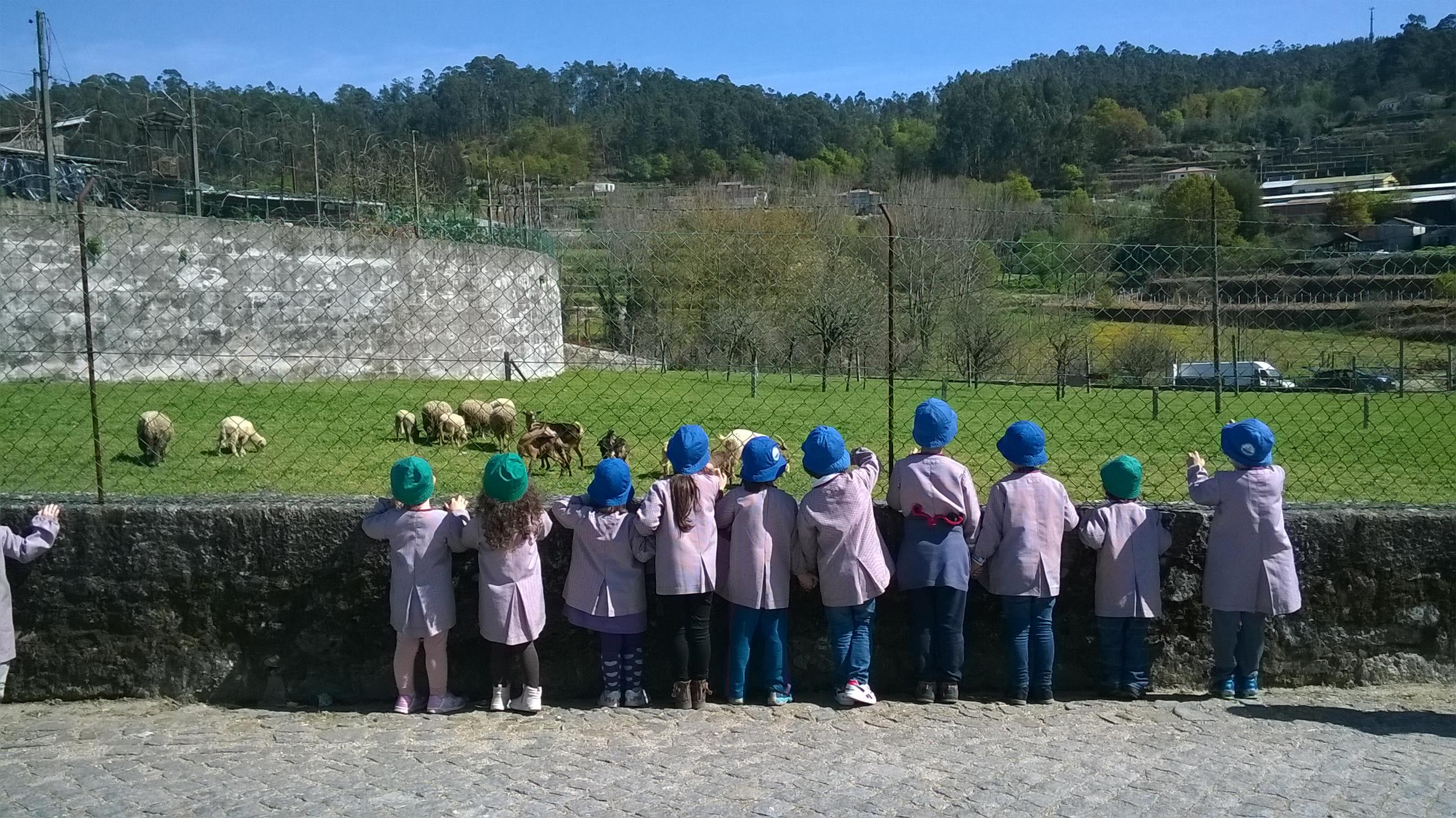 Jardim de Infância visita a Quinta do Centro Social
