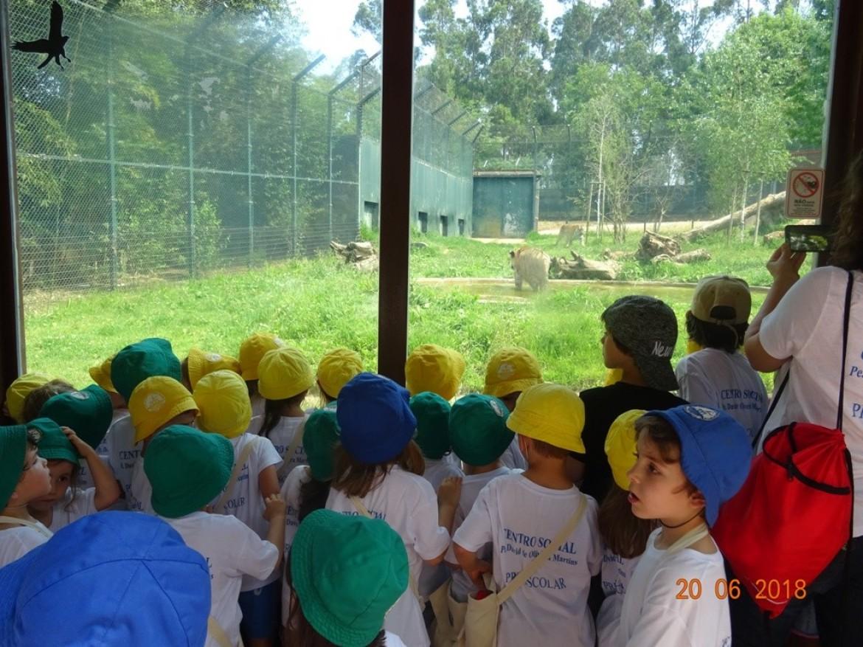 Pré-escolar e CATL: exploradores por um dia!